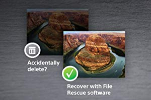 File Rescue Software