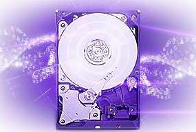 Wd 2tb Purple Sata Surveillance Hard Drive Wd20purz Buy Best