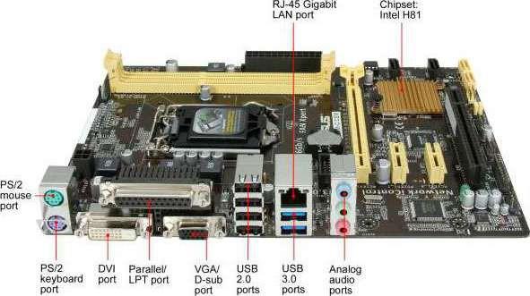 Asus H81M-C Motherboard Vista