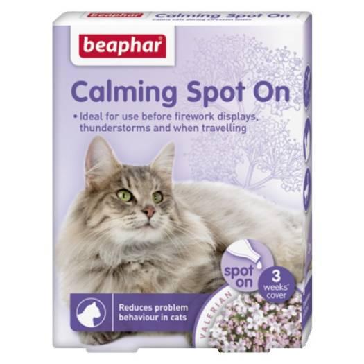 Calming Spot on Cat