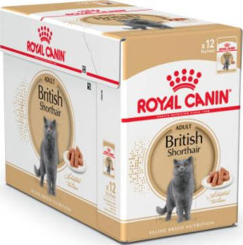 Wet Food Feline Breed Nutrition British Shorthair 12x85g Pouches Buy Best Price Global Shipping