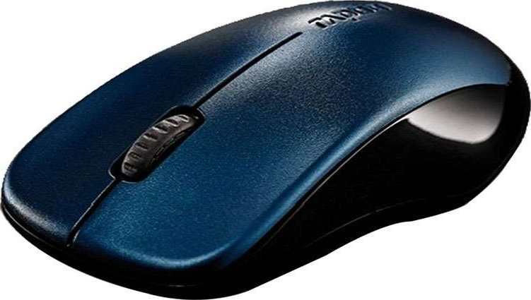 RAPOO 1620 MOUSE WINDOWS VISTA DRIVER DOWNLOAD